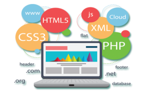 Web-Development-in-Amritsar